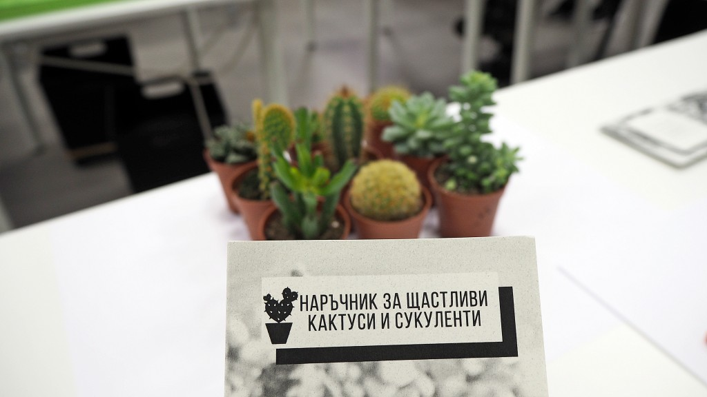 cactus lab