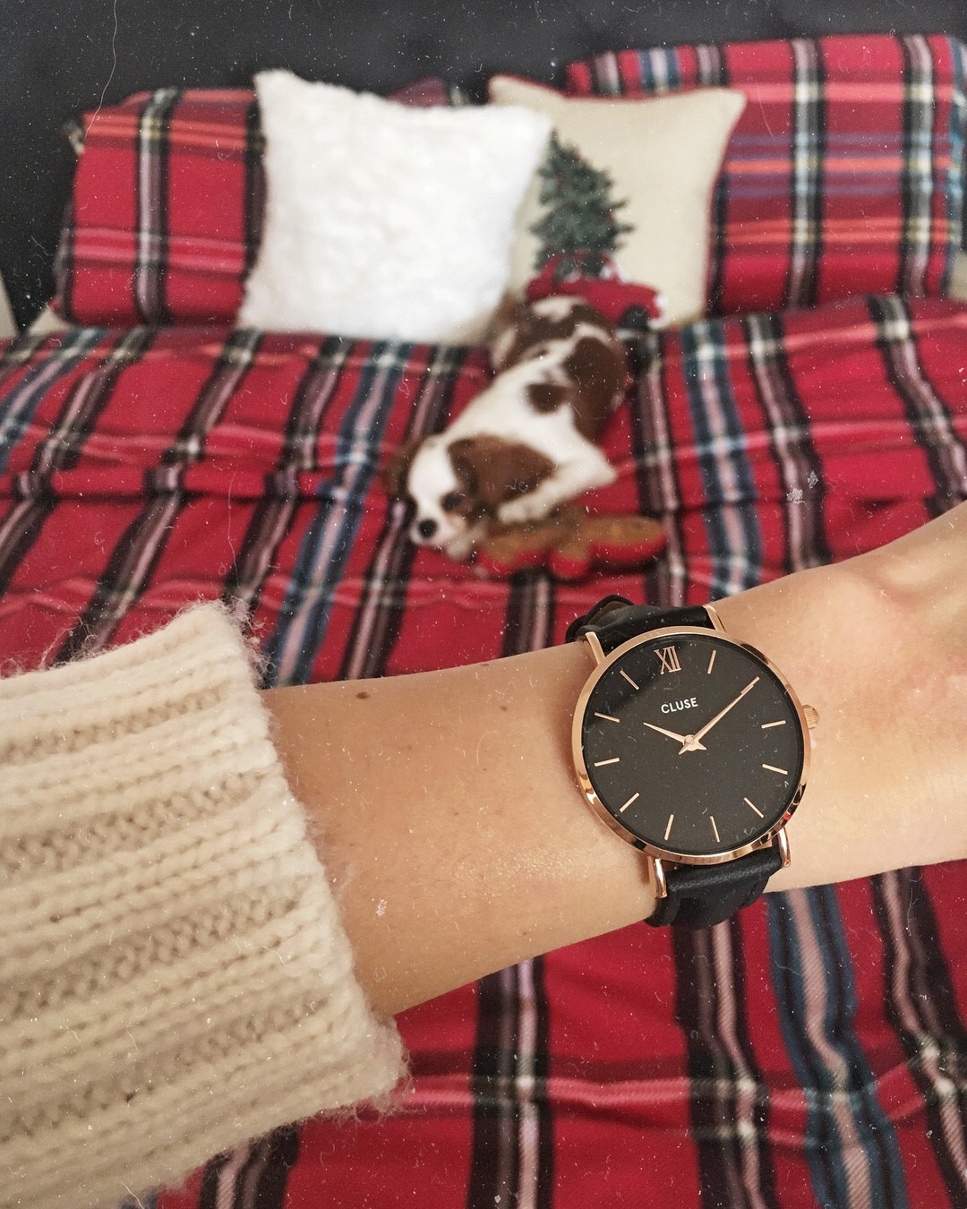 christmas cluse watch