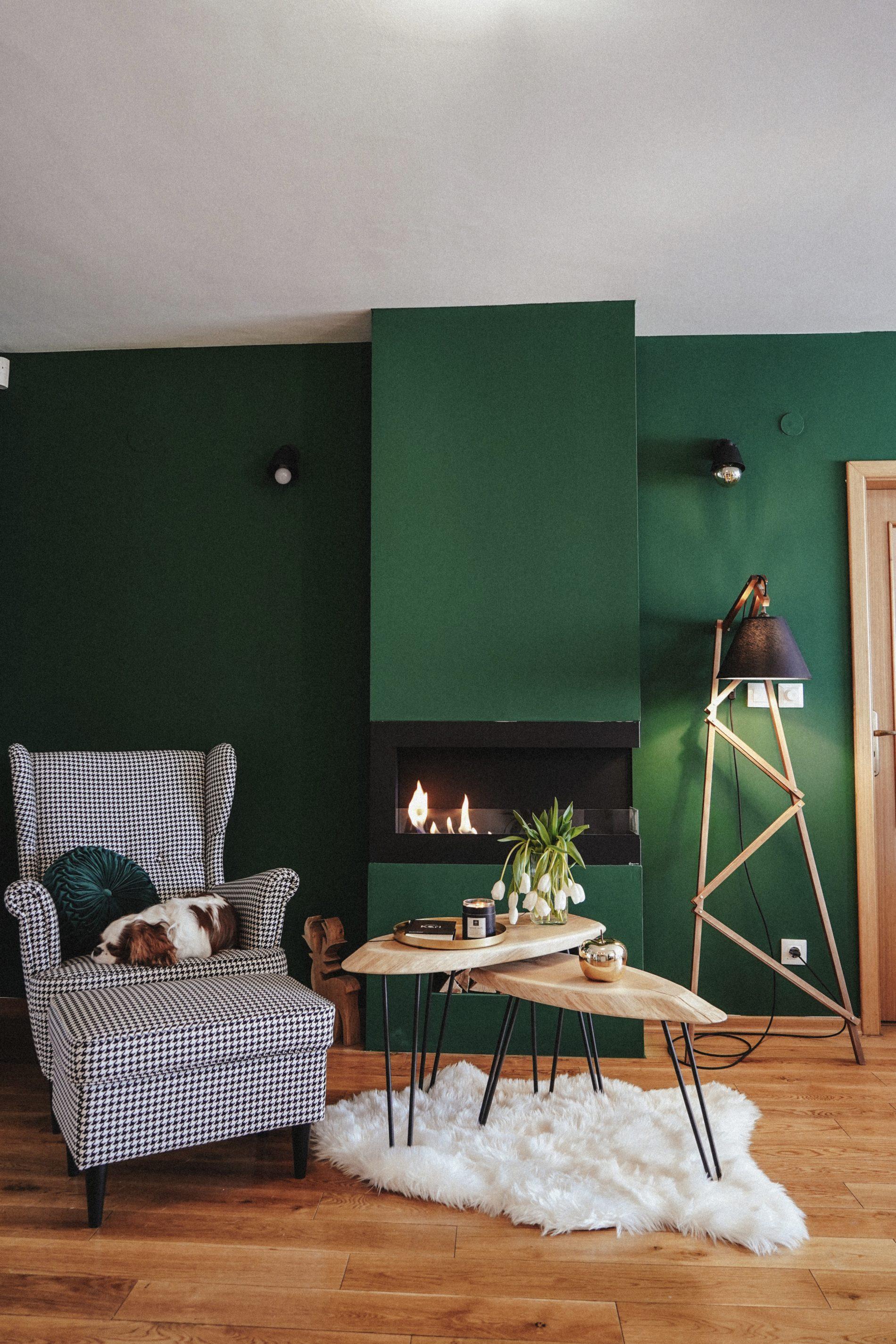 interior decor apartment green